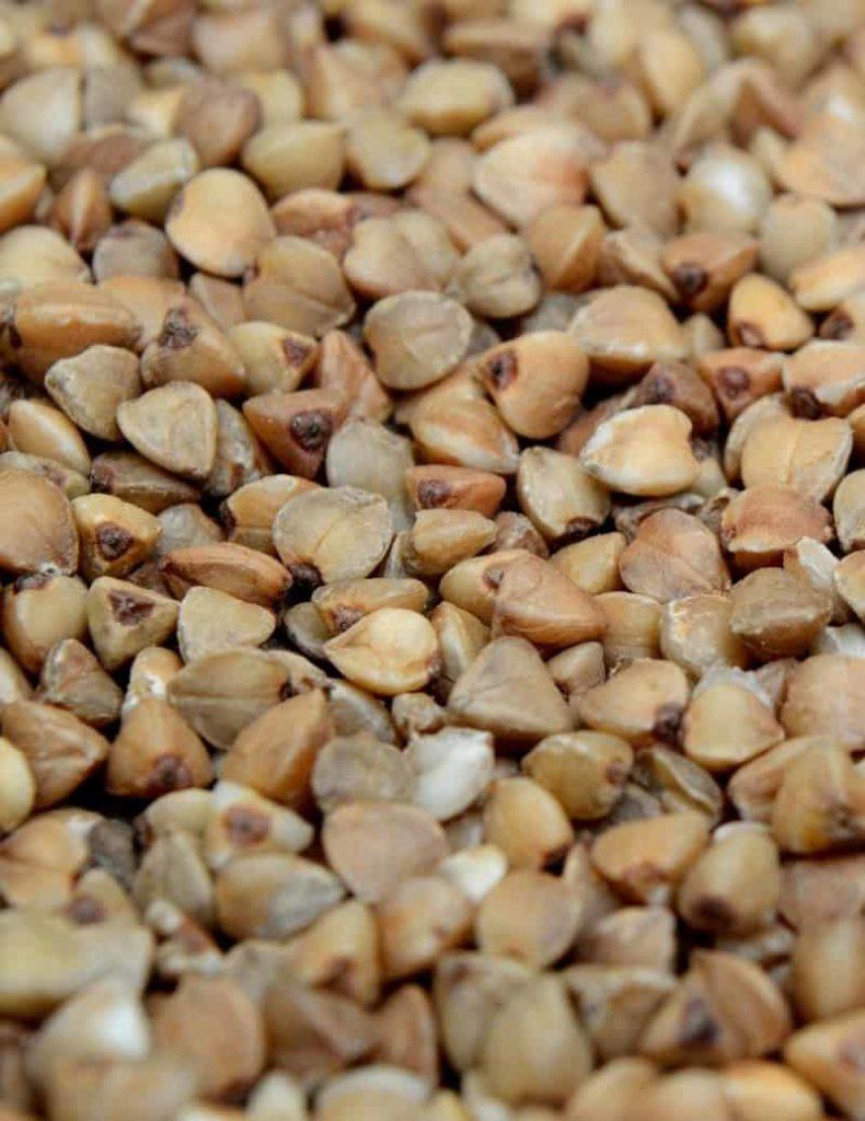 Trigo sarraceno en granos