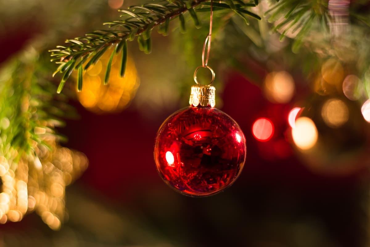 Navidad libre de gluten: 5 consejos y 11 recetas para compartir